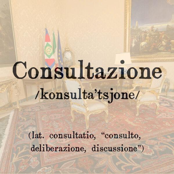 Consultazione, s.f.