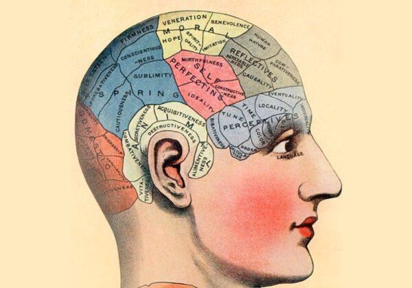 Perché il nostro cervello ha bisogno di storytelling